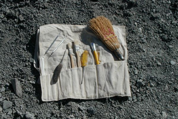 How to Assemble a fossil hunting kit – DIY